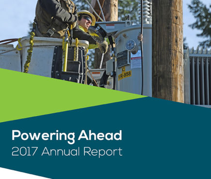The cover of the 2017 Annual Report 'Powering Ahead' shows two linemen working on a voltage regulator.