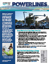 The electronic edition of our 2020 Calendar Edition Newsletter.