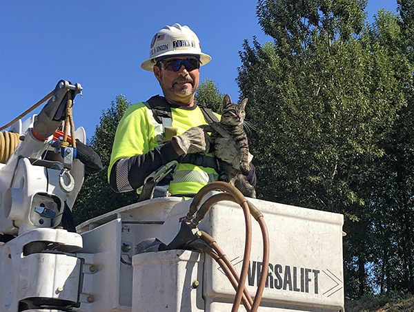 A lineman in a bucket truck holds a cat.