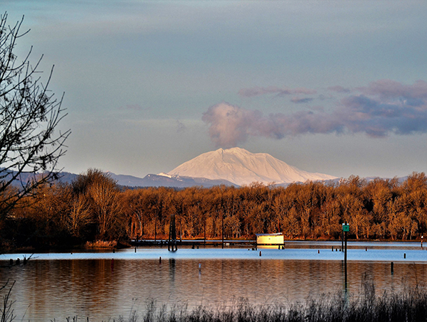 Mount Adams as seen from Scappoose Bay.