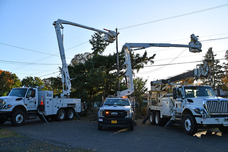 Three bucket trucks in front of a tree and power lines.