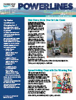 The electronic edition of our December 2018 Power Lines newsletter.