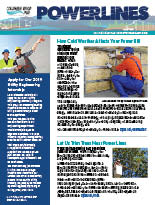 The February 2019 electronic edition of our Power Lines newsletter.