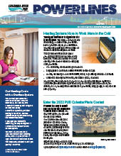 The electronic edition of our February 2021 Power Lines newsletter.