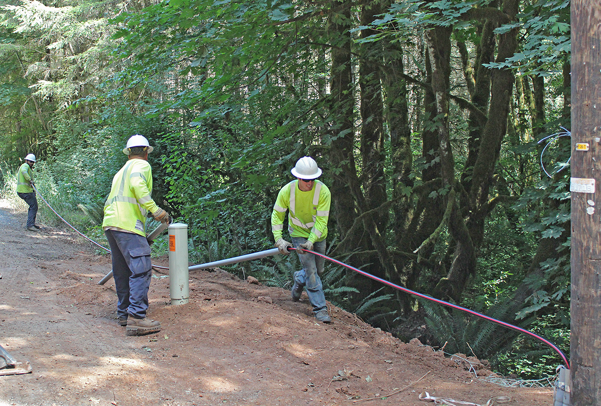 Converting overhead lines to underground lines reduces tree-caused outages.