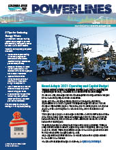 The electronic edition of our January 2021 Power Lines newsletter.