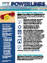 The electronic edition of our June 2020 Power Lines newsletter.