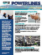The electronic edition of our March 2021 Power Lines newsletter.