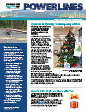 The electronic edition of our November 2020 Power Lines newsletter.
