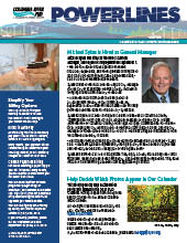 The electronic edition of our October 2020 Power Lines newsletter.
