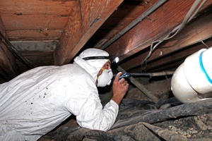 Home Energy Experts, Evaluating a Home Crawl Space